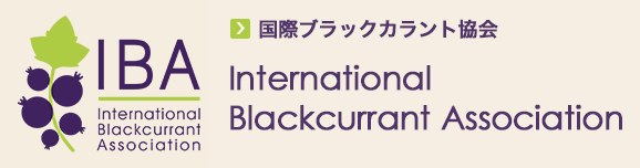 International Blackcurrant Association